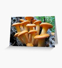 Callow Cluster Greeting Card