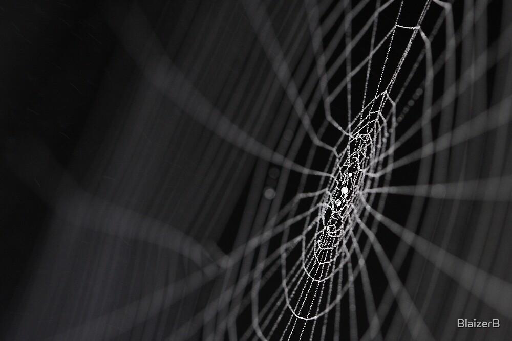 Web by BlaizerB