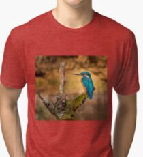 Kingfisher on branch Tri-blend T-Shirt