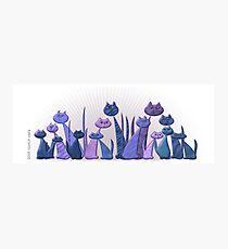 Vector Cats 2016 10th aniversary edition v5 Photographic Print