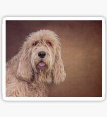 Shaggy Dog Sticker