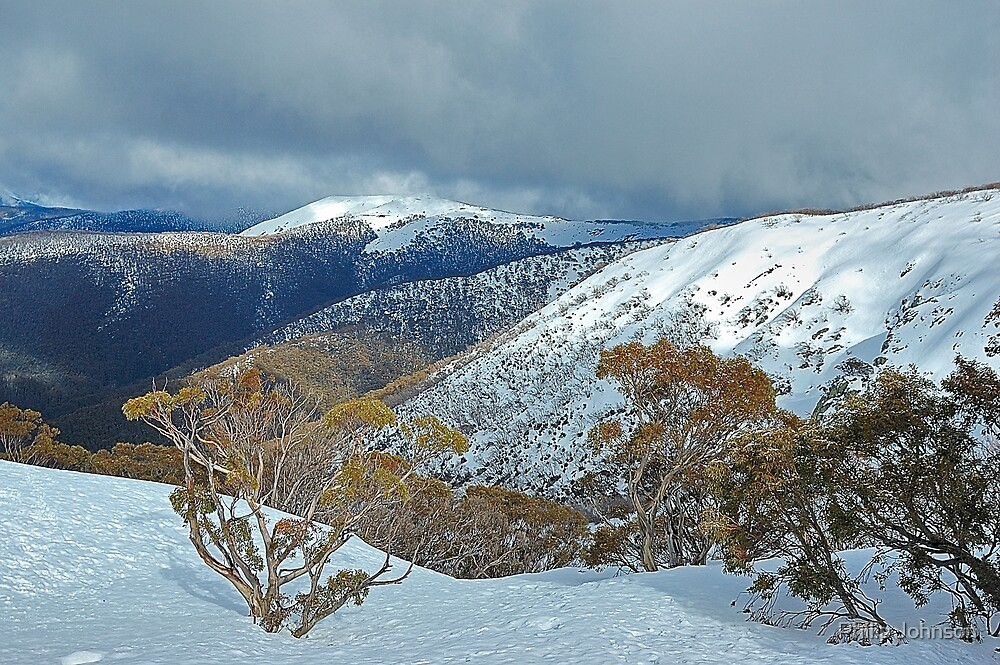 Snowy Mountains Views- Victorian Alps National Park ,Victoria Australia by Philip Johnson