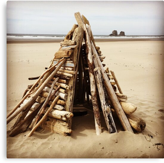 Driftwood Structure on the Oregon Coast by sailgirl