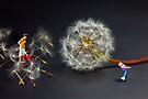 Naughty Girl Playing Dandelion Little People Big World by Paul Ge