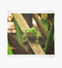 Tree Frog Scarf