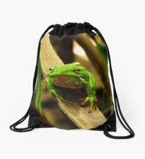 Tree Frog Drawstring Bag