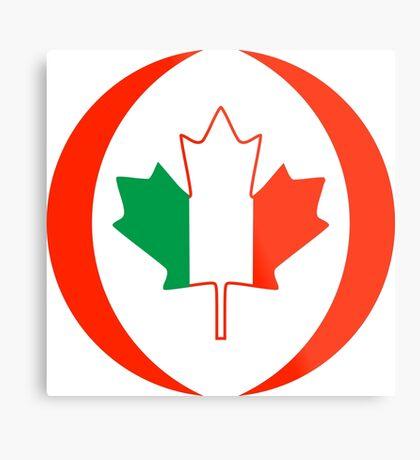 Irish Canadian Multinational Patriot Flag Series Metal Print