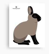 Black Sable Rabbit Canvas Print