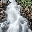 waterfall on vancouver island by Istvan Hernadi