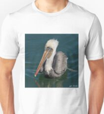 Brown Pelican With White Head Plumage T-Shirt