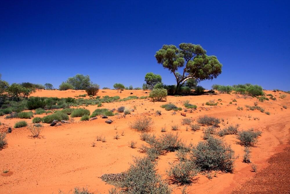 Desert1 by Ken Boxsell