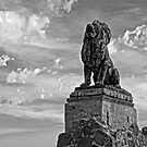 Lion on Grotto Hill 2 by Larry Costales