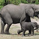 Lets go play, mom! by Hermien Pellissier