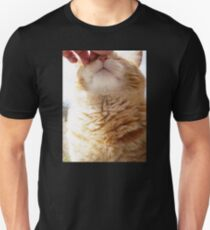 Petting a Fat Orange Cat Unisex T-Shirt