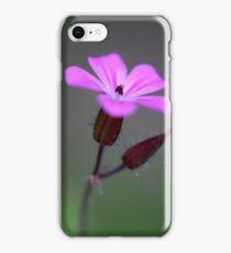 Flower of the Herb-Robert iPhone Case/Skin
