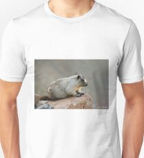 Hoary Marmot on a Boulder T-Shirt