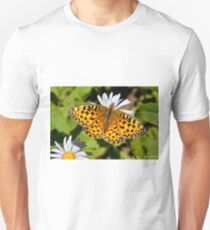 Pearl Border Fritillary Butterfly on an Aster Bloom Unisex T-Shirt
