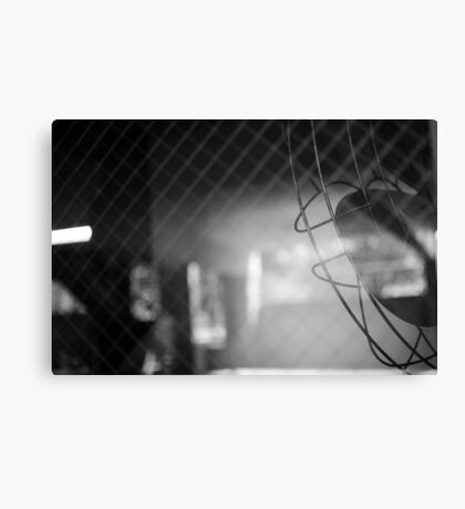 Taunting Fan Canvas Print