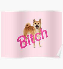 Bitch Shibe Poster