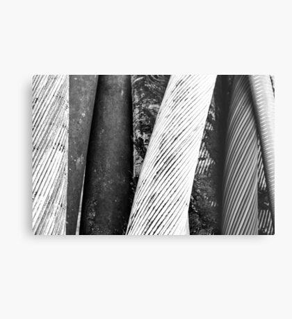 Tethered Metal Print