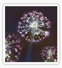 Floral Fireworks. Dark Floral Sticker