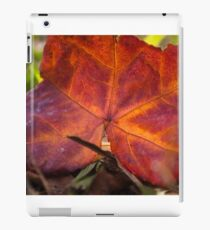 Autumn colour iPad Case/Skin