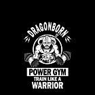 Dragonborn Power Gym by Tee-Samurai