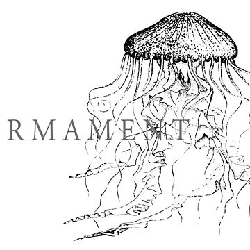 Firmament Official Merchandise - Cnidarian White by Firmament