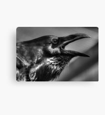 Raven in black and white Canvas Print