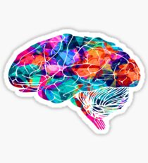 Colors Brain Sticker