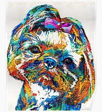 Colorful Shih Tzu Dog Art by Sharon Cummings Poster