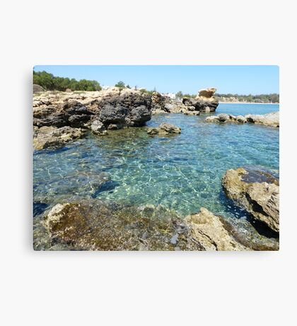 Volcanic Seashore Canvas Print