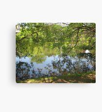 tree branch pond mirror  Canvas Print