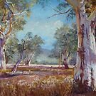 'Melrose Gums' by Lynda Robinson