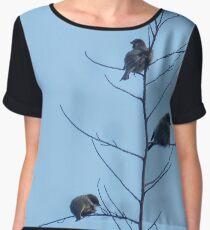sparrows Women's Chiffon Top