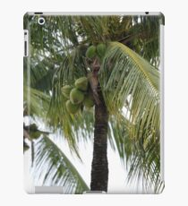 Barbados -- Coconut Theme I If you like,  purchase, try a cellphone cover thanks! iPad Case/Skin