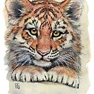 Cute Tiger Cub 903 by schukinart
