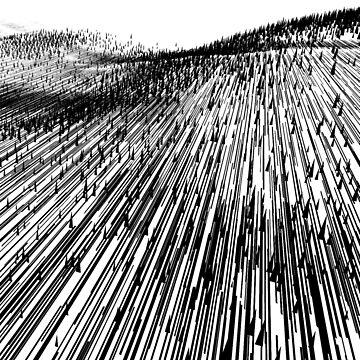 Abstract Field (black) by f-zimba