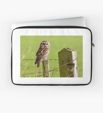 Tawny Owl on fencepost Laptop Sleeve