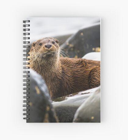 Arran Otter Spiral Notebook