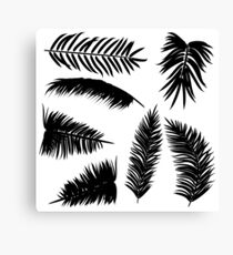 Palm Leaves silhouettes Canvas Print