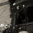 the wooden window  by queenenigma