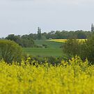 Landscape  by RosiLorz