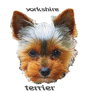 Printing dogs - Yorkshire Terrier by Hujer