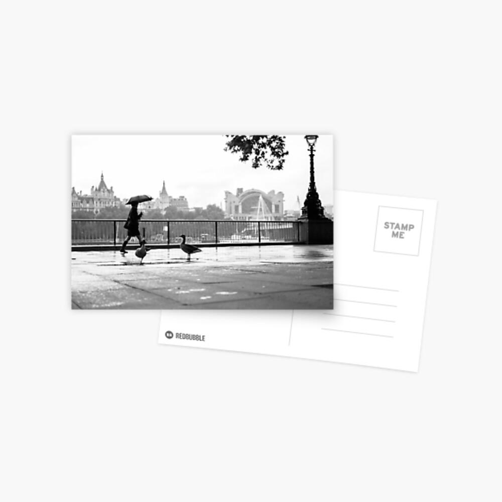 SOUTH BANK, LONDON - 2014 Postcard