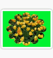 Fancy Tulips - Keukenhof Gardens Sticker