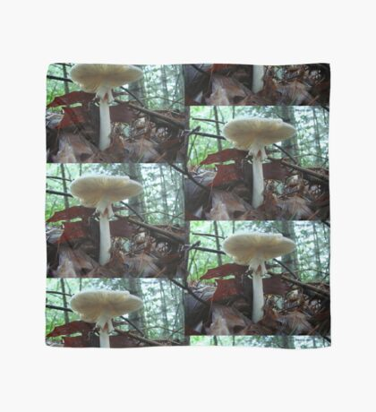Tiny Toad 'Neath Parasol Mushroom Scarf