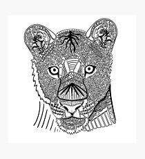 Lioness Doodle Photographic Print