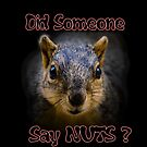 Did Someone Say Nuts? by RicksPix