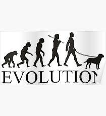 EVOLUTION labrador Poster